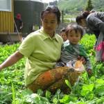 Burmese_mum_in_garden
