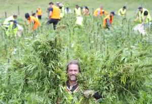 Hemp venture places community at the heart of business Inspiring Communities