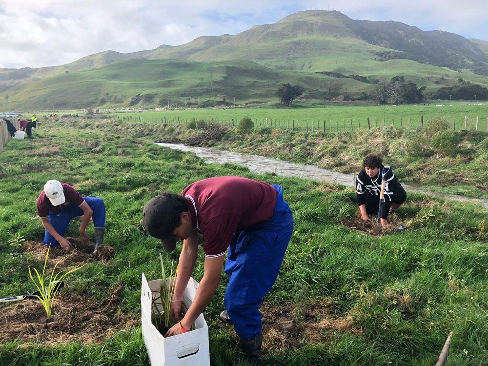 Te mauri o Uawa - The essence of Tolaga Bay Inspiring Communities