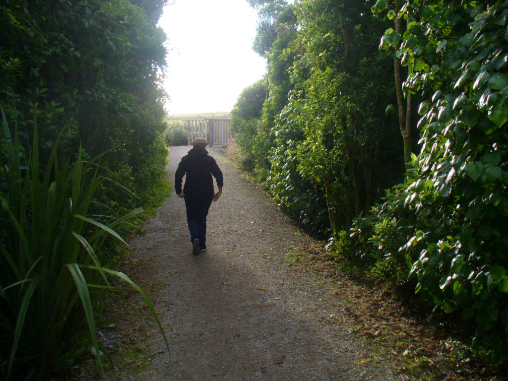 Walkways and Whitebait: Good things in Greymouth Inspiring Communities